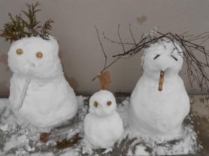 La neige... dans Activités diverses dscn0030-300x225